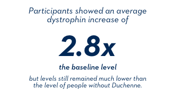 Participants showed an average dystrophin increase of 2.8x the baseline level, but levels still remained much lower than the level of people without Duchenne.