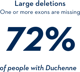 Large deletions: one or more exons are missing 72% of people with Duchenne